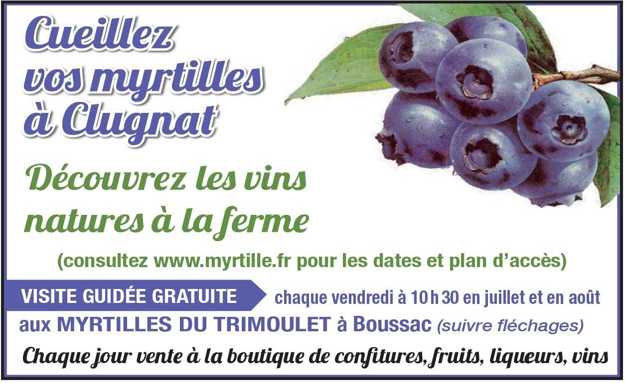 Myrtilles du Trimoulet